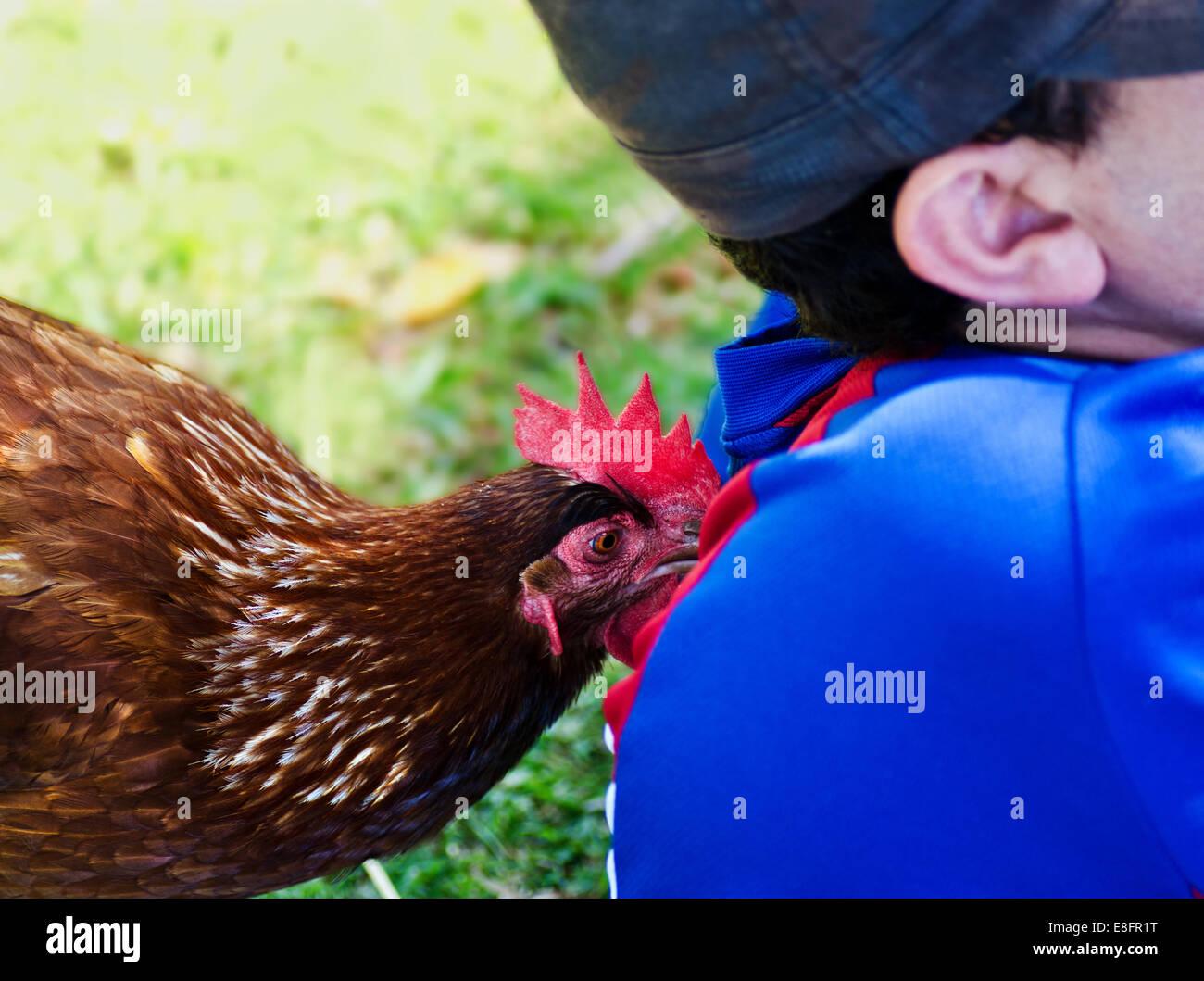 Pollo pechando la parte posterior de la cabeza de un hombre Foto de stock