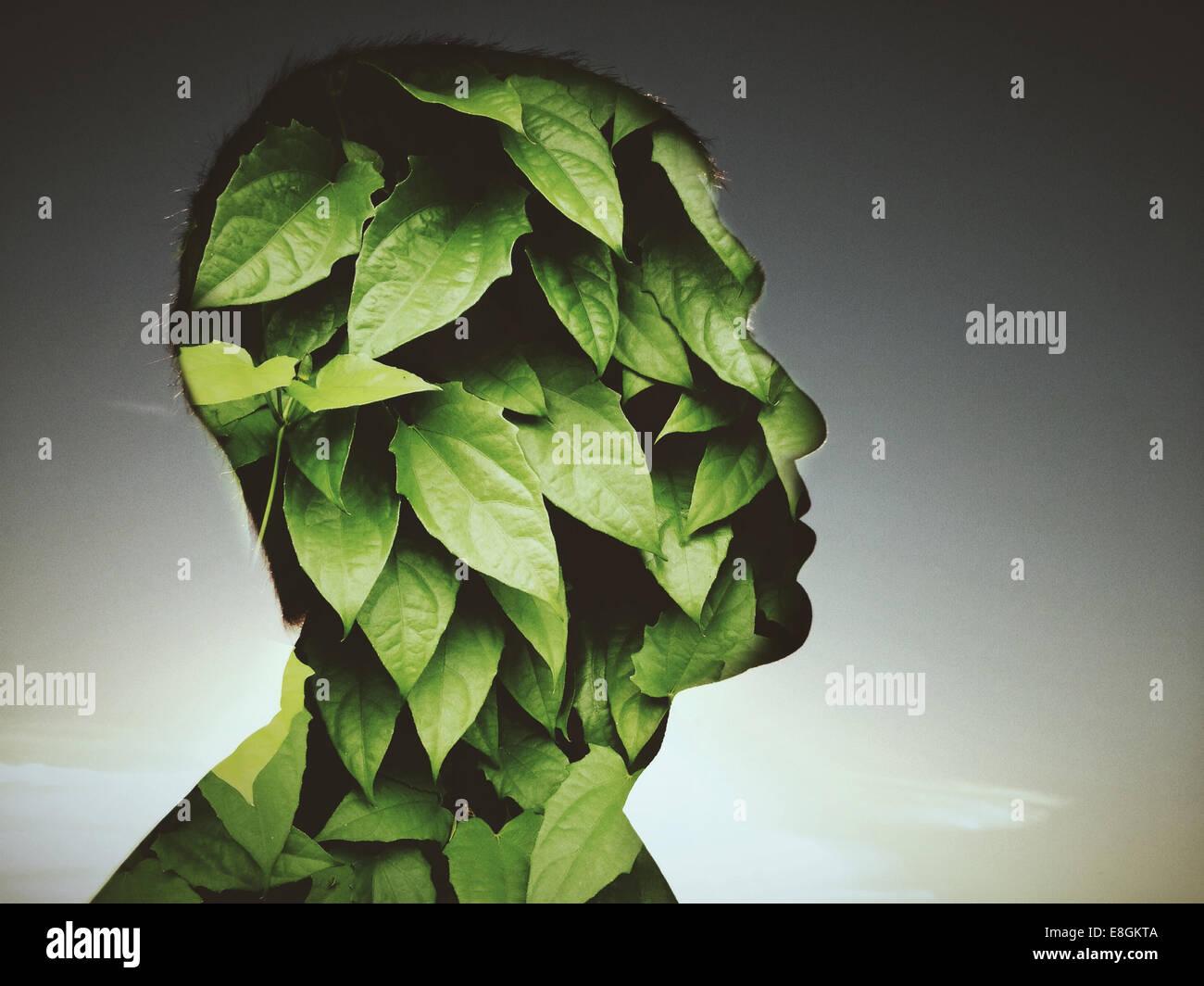 Hojas que cubren el perfil de hombre Imagen De Stock
