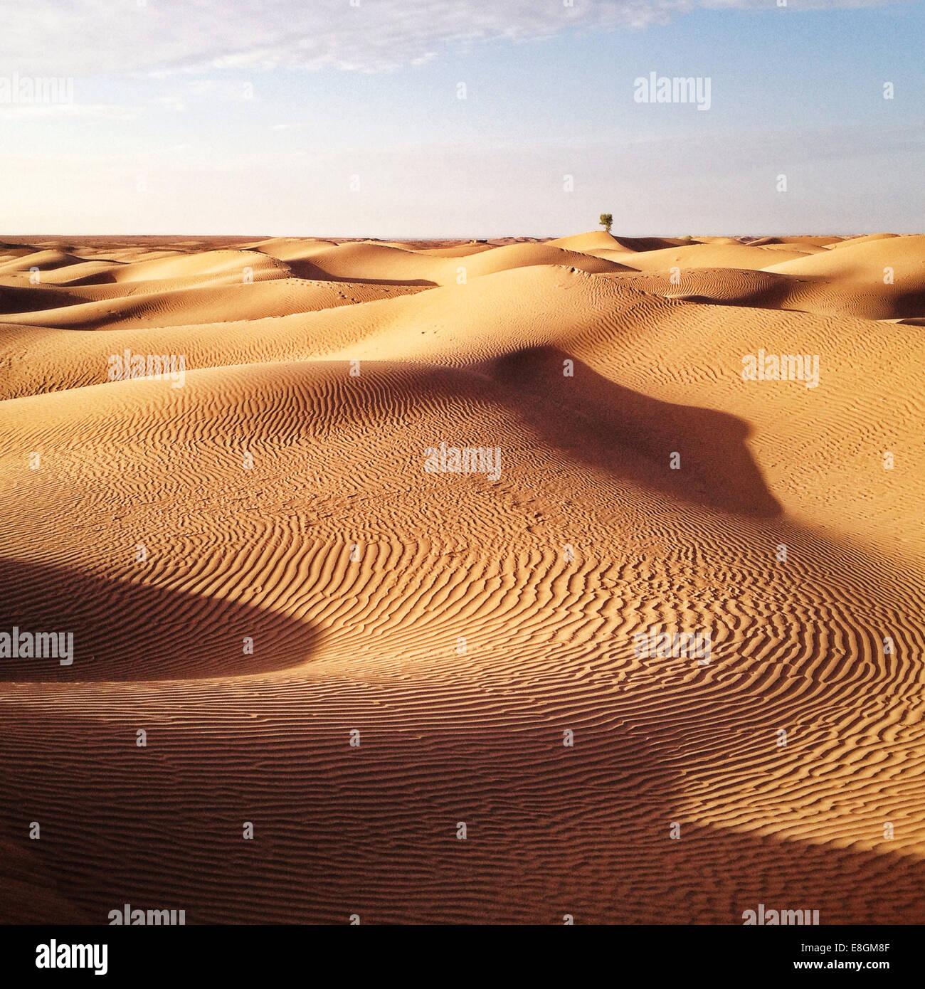 Marruecos, el desierto del Sahara Imagen De Stock