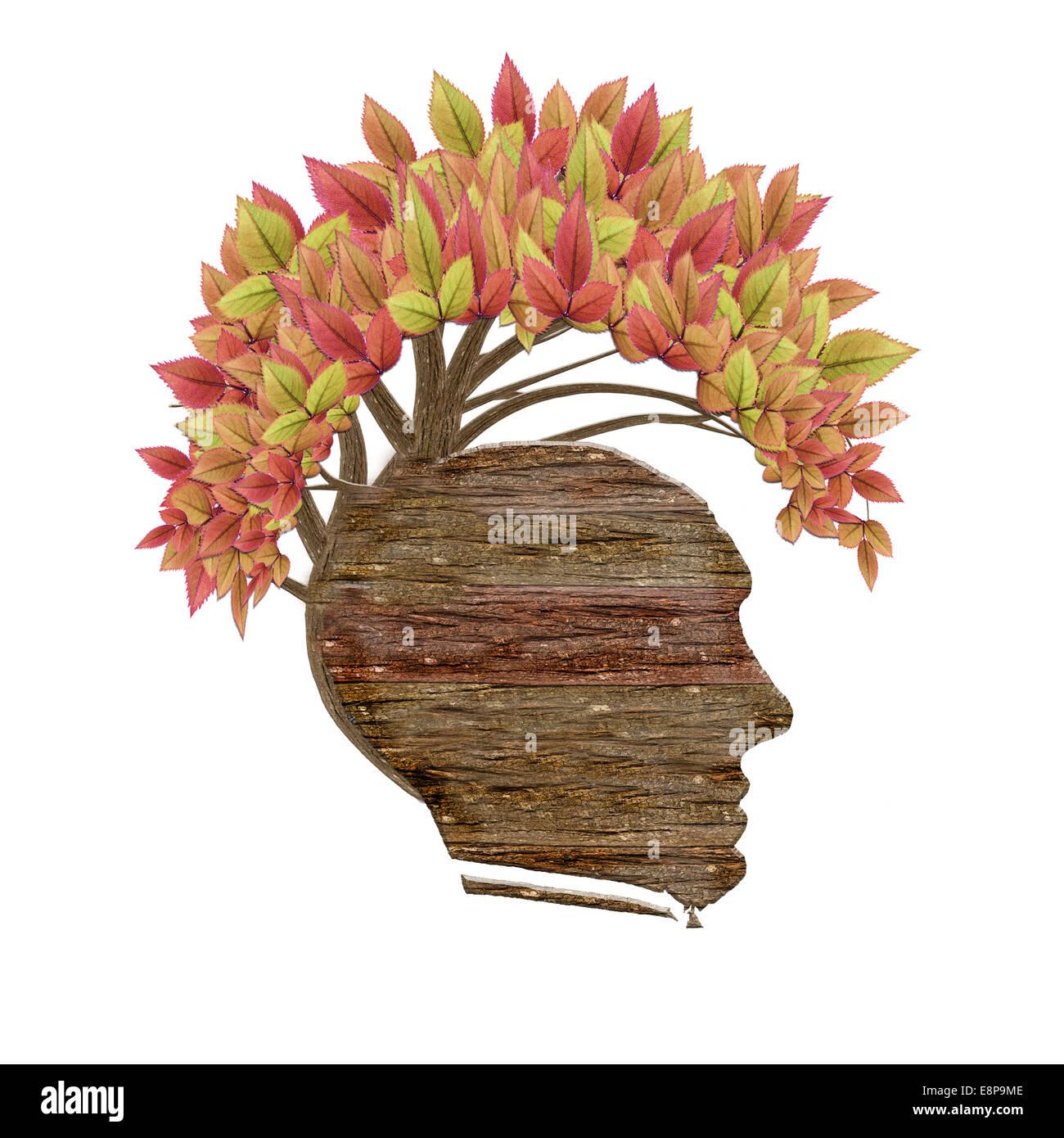 Aislados de cabeza humana de madera y hojas Imagen De Stock