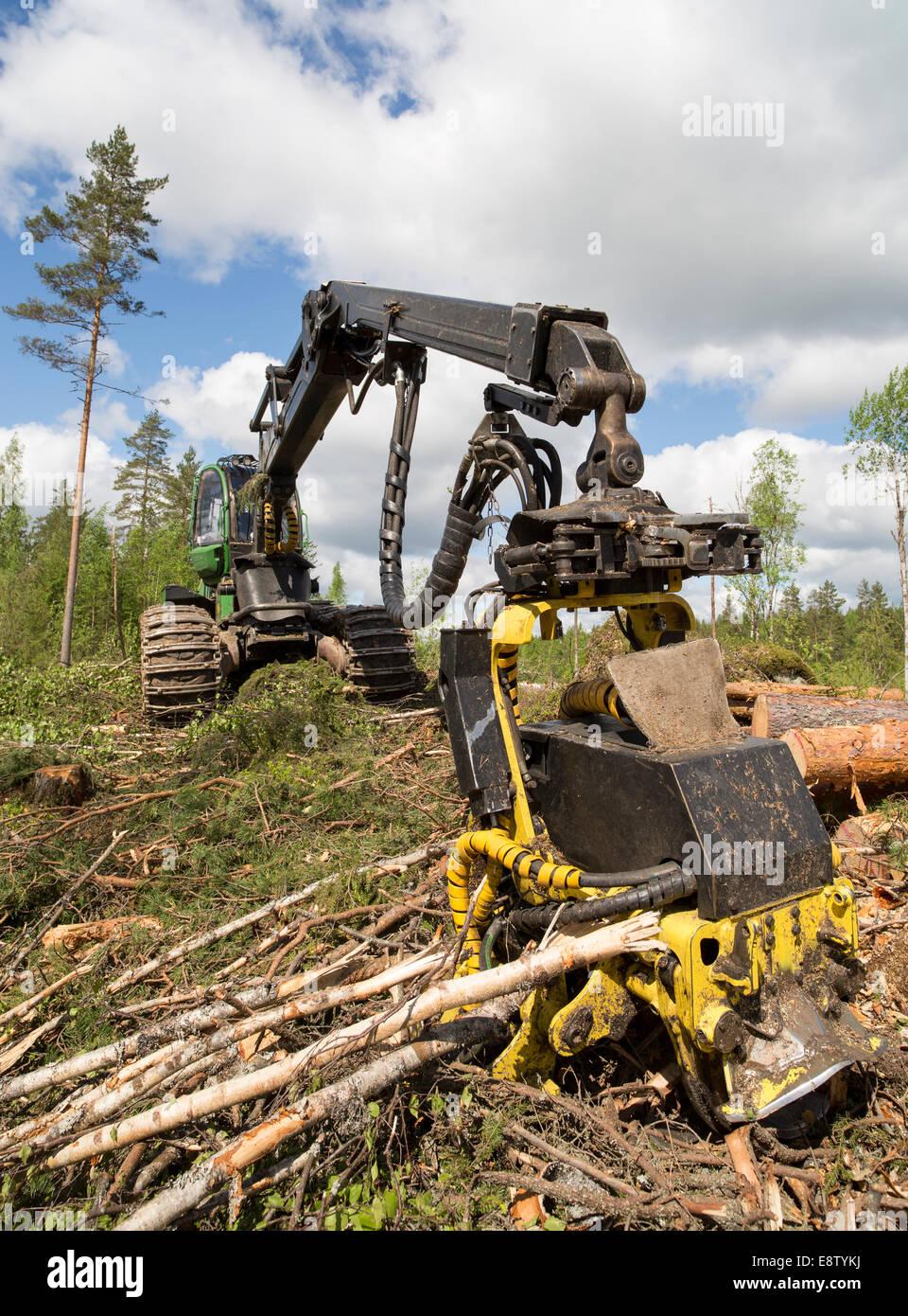 John Deere 1170E cabeza cortadora de cosechadora forestal Foto de stock