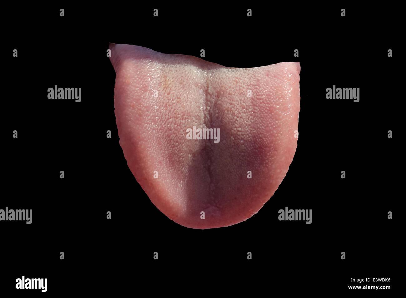 Lengua humana puso fuera a través del agujero en la superficie negra. Gracioso dibujo abstracto Foto de stock