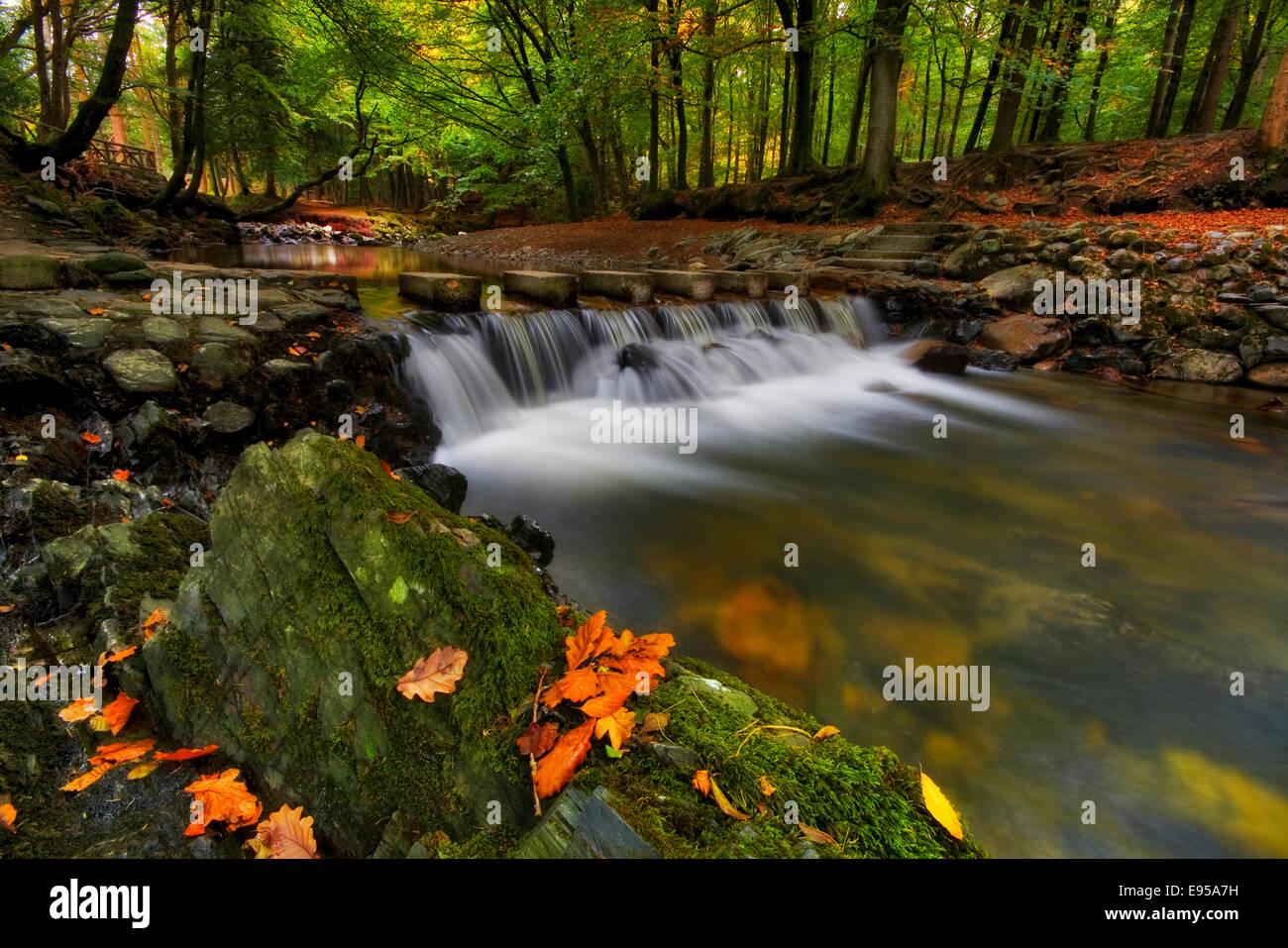 El otoño es aquí Foto de stock