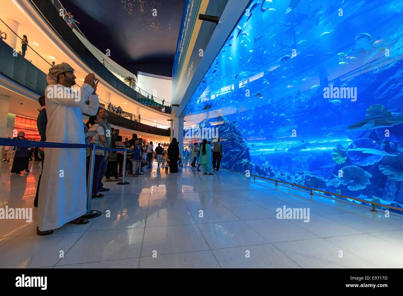 DUBAI, EMIRATOS ÁRABES UNIDOS - Octubre 07,2014: Acuario en Dubai Mall, el centro comercial más grande Imagen De Stock