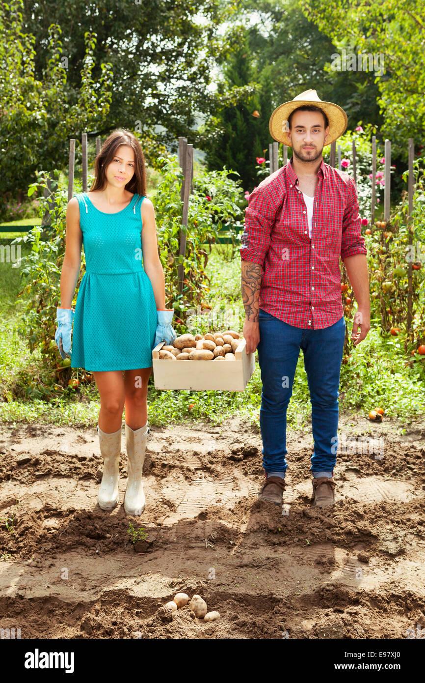 Pareja joven cosechar patatas en huerto Imagen De Stock