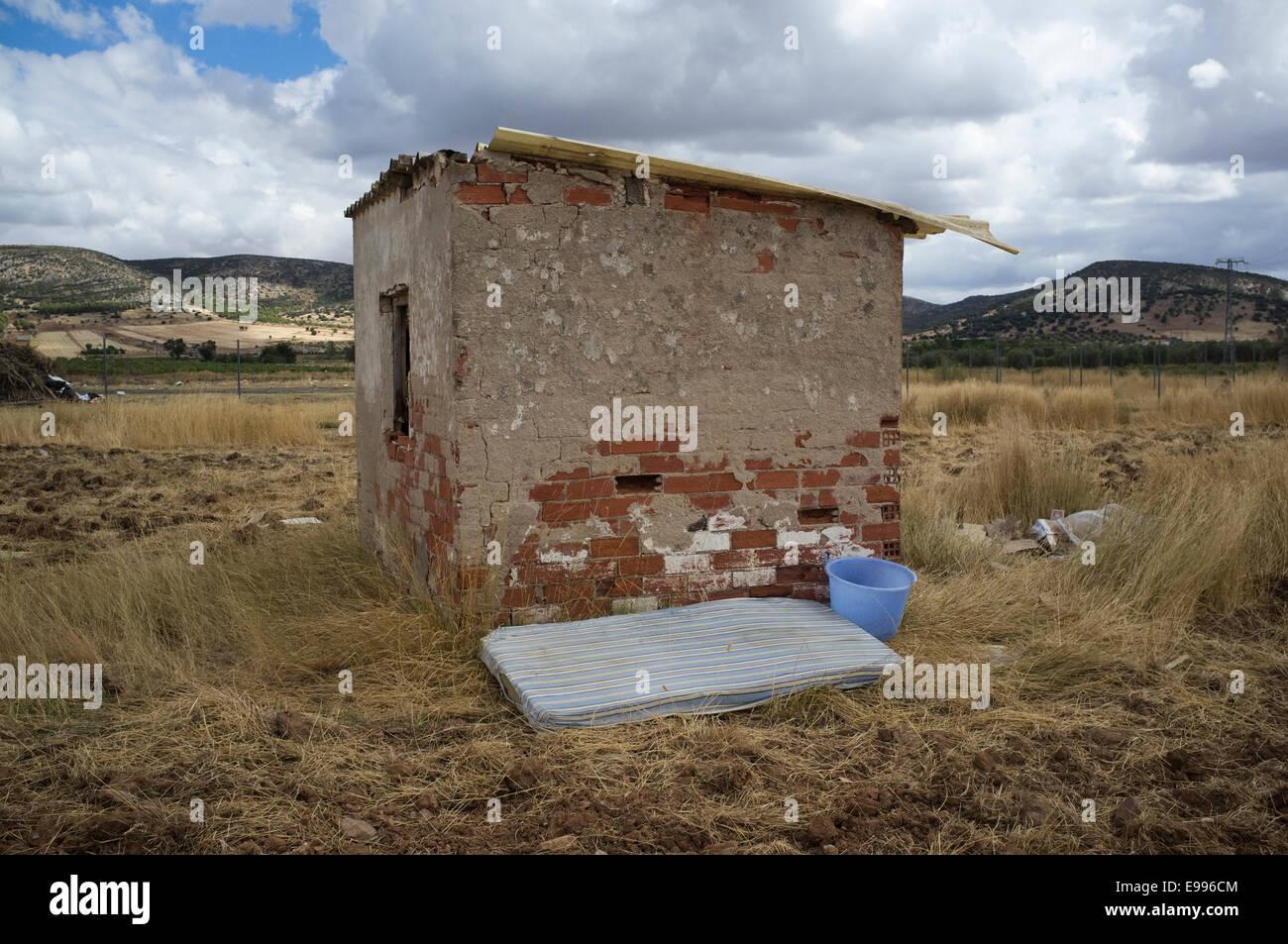 Los inmigrantes temporales desde Rumania venido a Moral de Calatrava, Ciudad Real, España, para trabajar en la vendimia. Foto de stock