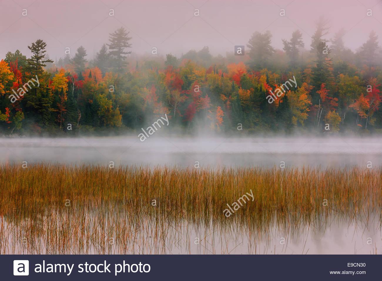 Connery Pond en Adirondack State Park, cerca de Lake Placid en la parte norte del estado de Nueva York, EE.UU. Imagen De Stock