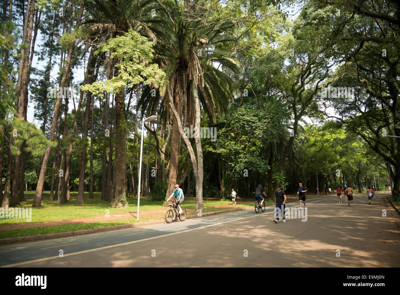 El Parque do Ibirapuera, en Sao Paulo, Brasil. Imagen De Stock