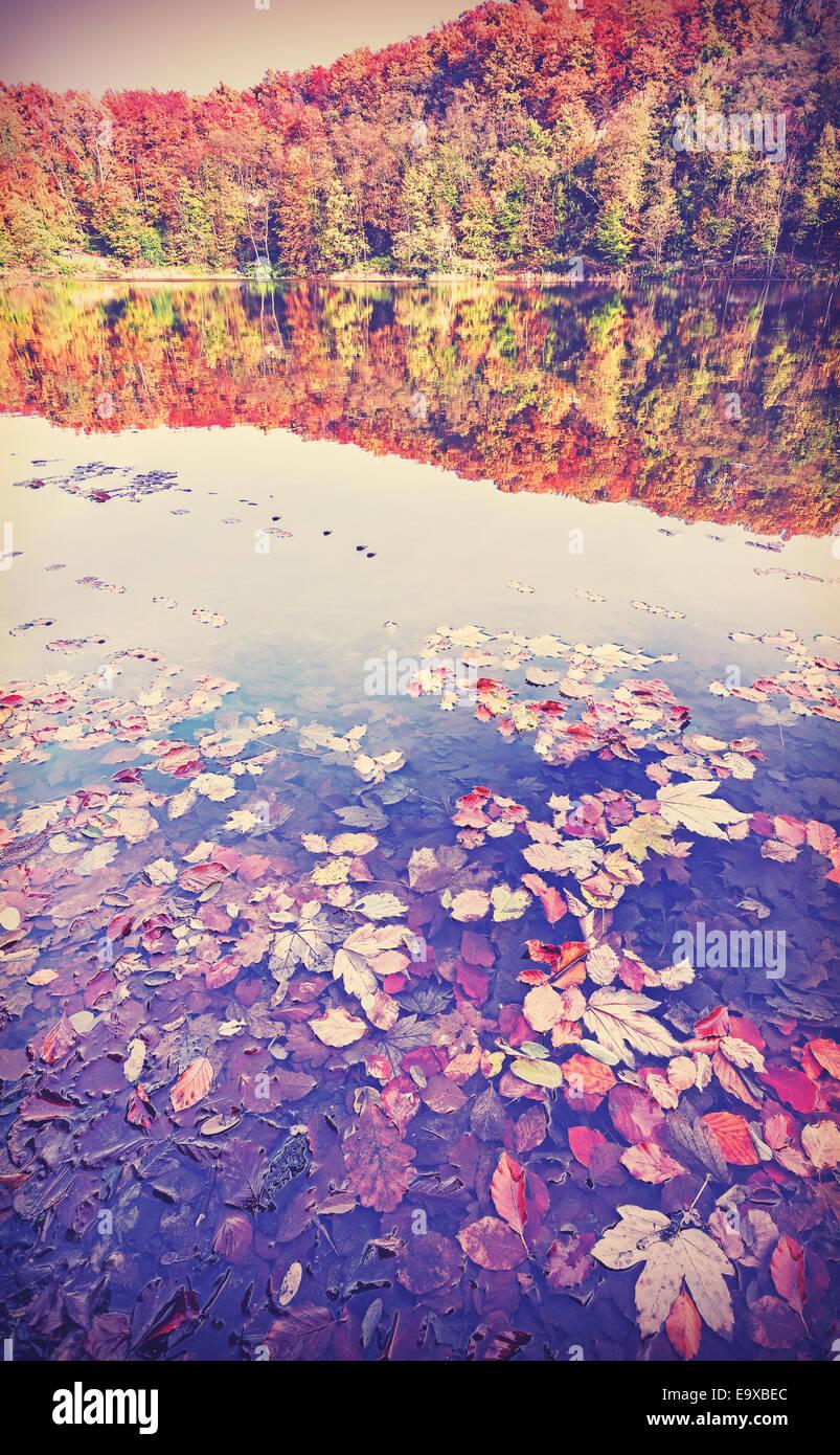 Vintage filtra paisaje otoñal con reflejo en un lago. Imagen De Stock