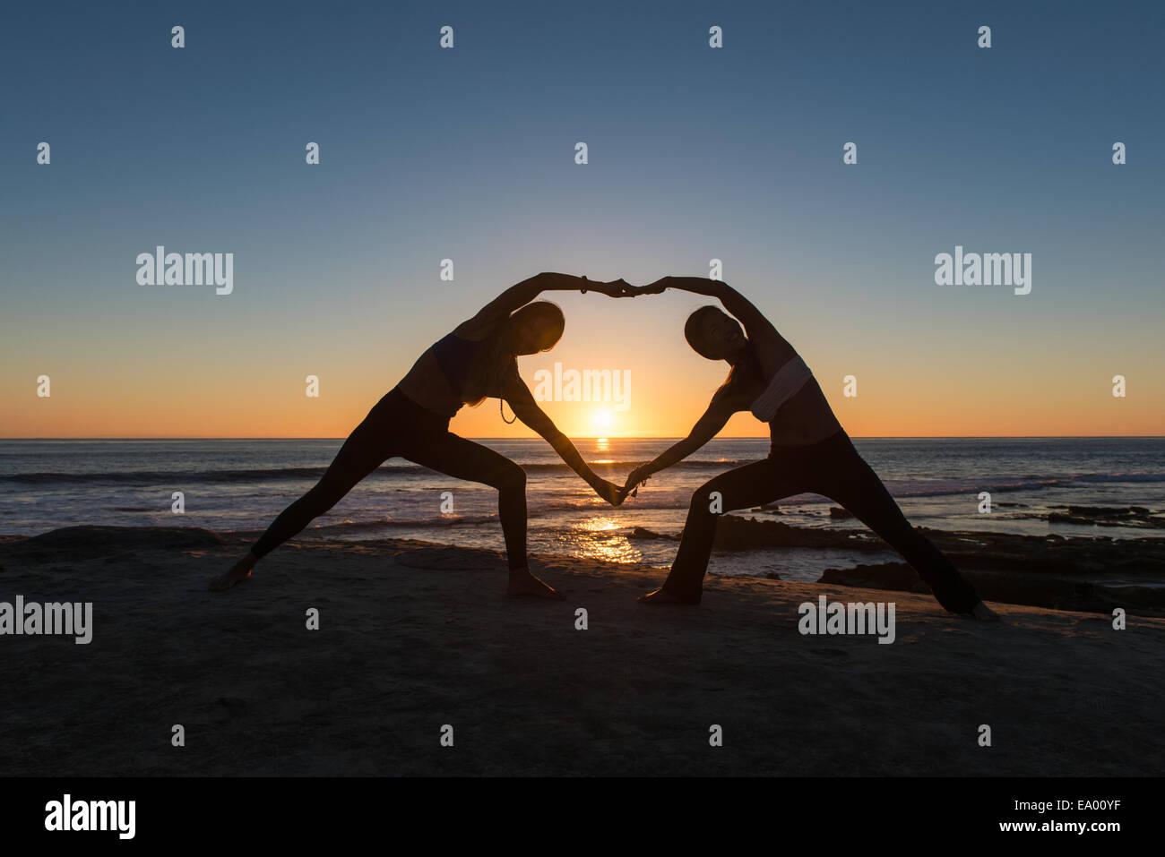 Heart Shape plantean, playa Windansea, La Jolla, California Imagen De Stock