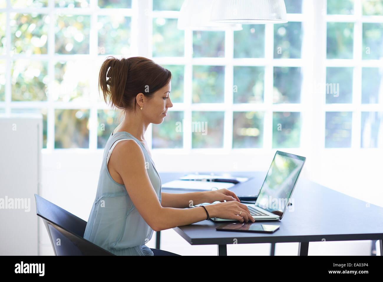 Mitad mujer adulta trabajando en el portátil en el comedor Imagen De Stock