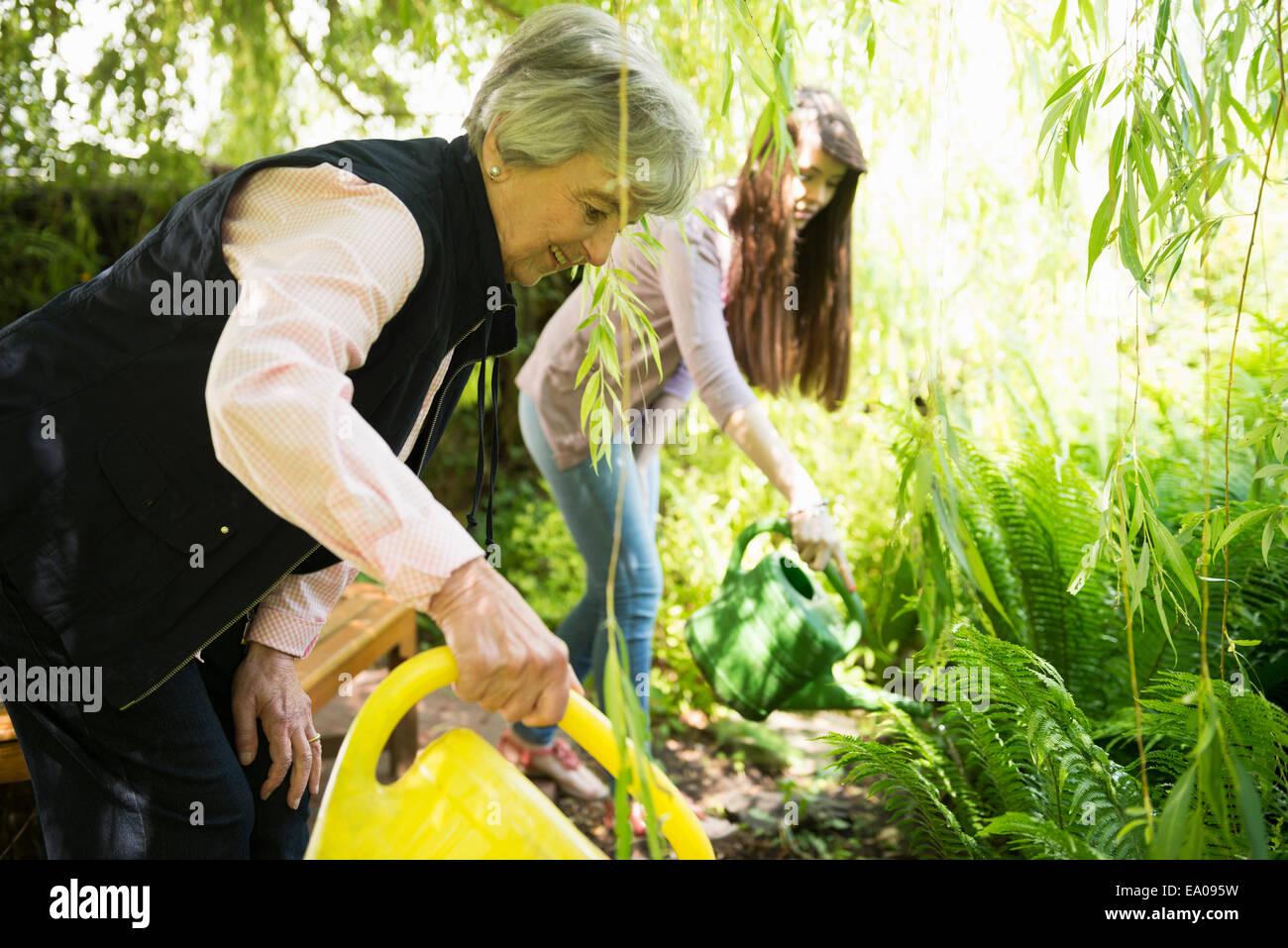 Abuela y nieta regar las plantas bajo el sauce Imagen De Stock