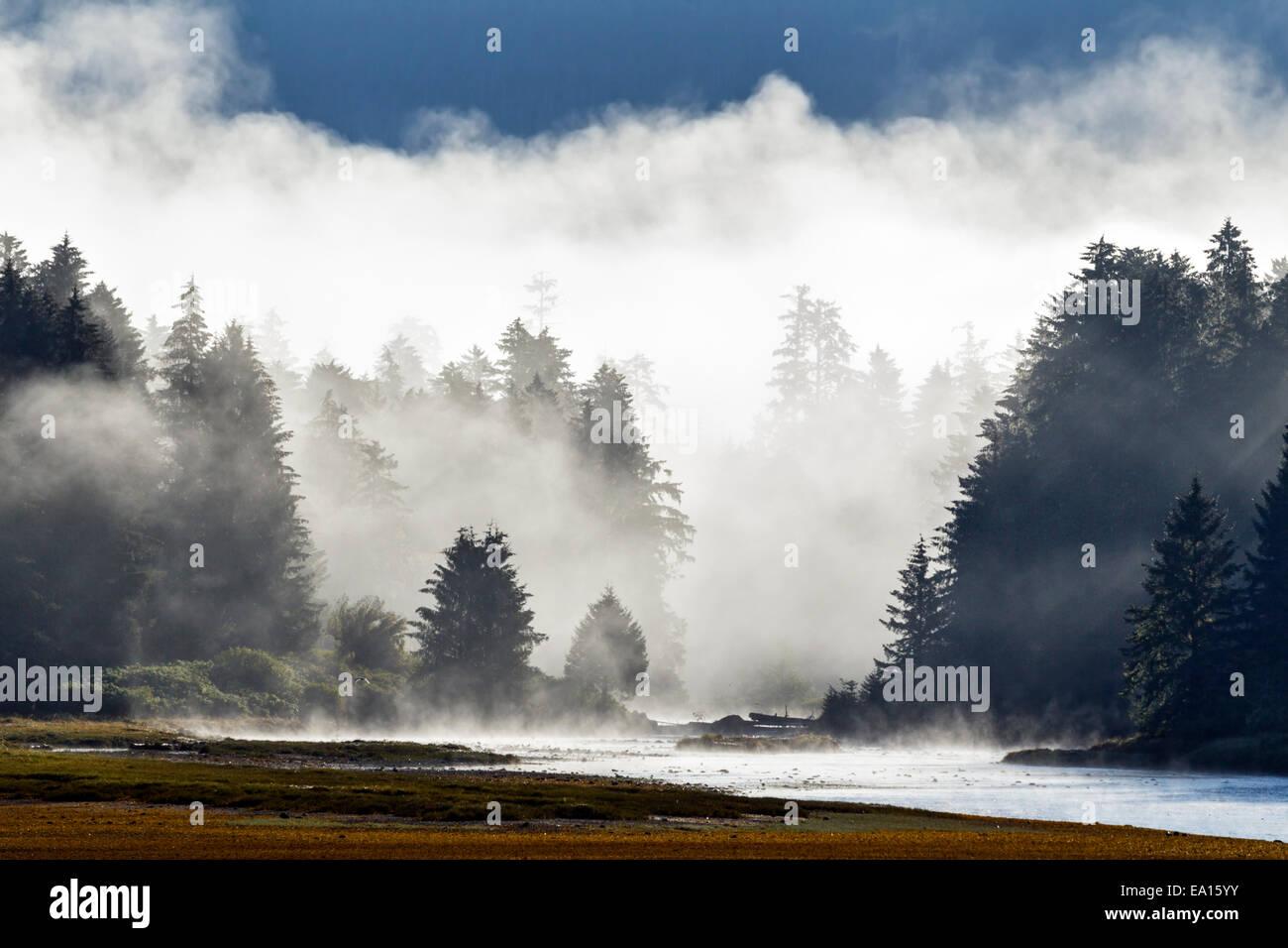 Una niebla de la mañana se levanta temprano desde el río y la selva costera del Tongass National Forest, Imagen De Stock