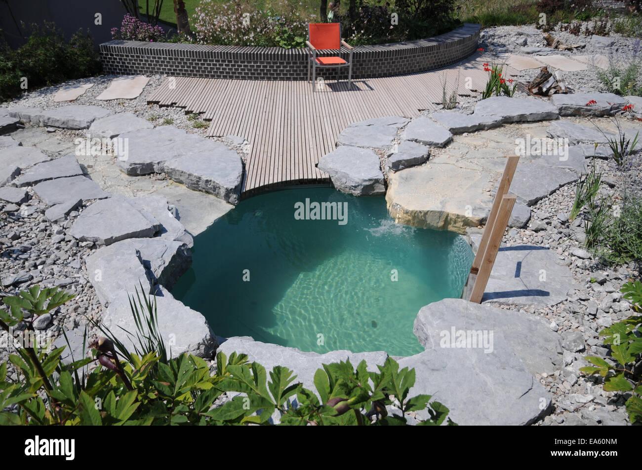 Natur-piscina Foto de stock
