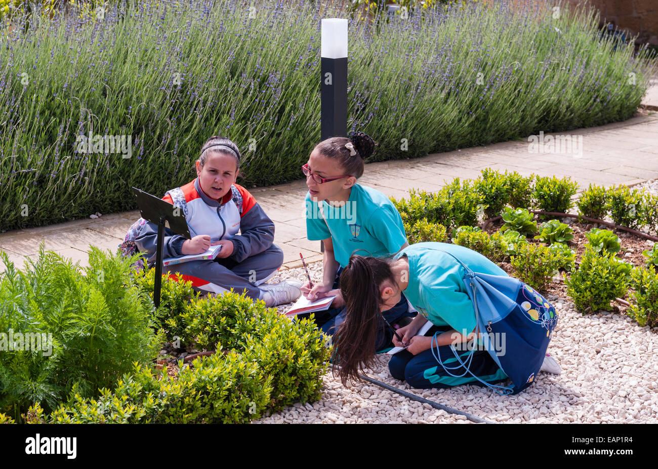 El Presidente's Kitchen Garden, en Attard, Malta. Los escolares en un viaje de estudio de botánica Imagen De Stock