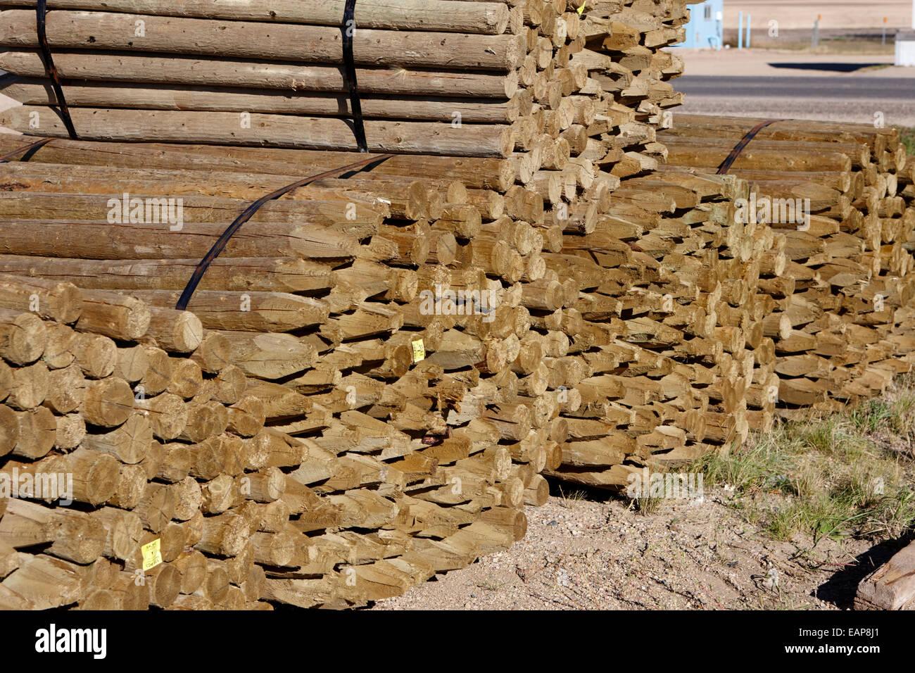 Pilotes de madera postes de cercas en un molino de Saskatchewan, Canadá Imagen De Stock