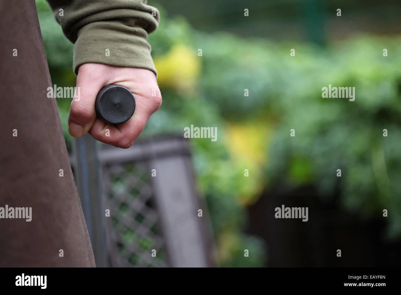 Primer plano de una mano llevando el asidero de una carretilla con la recolección de la col rizada en un proyecto Imagen De Stock