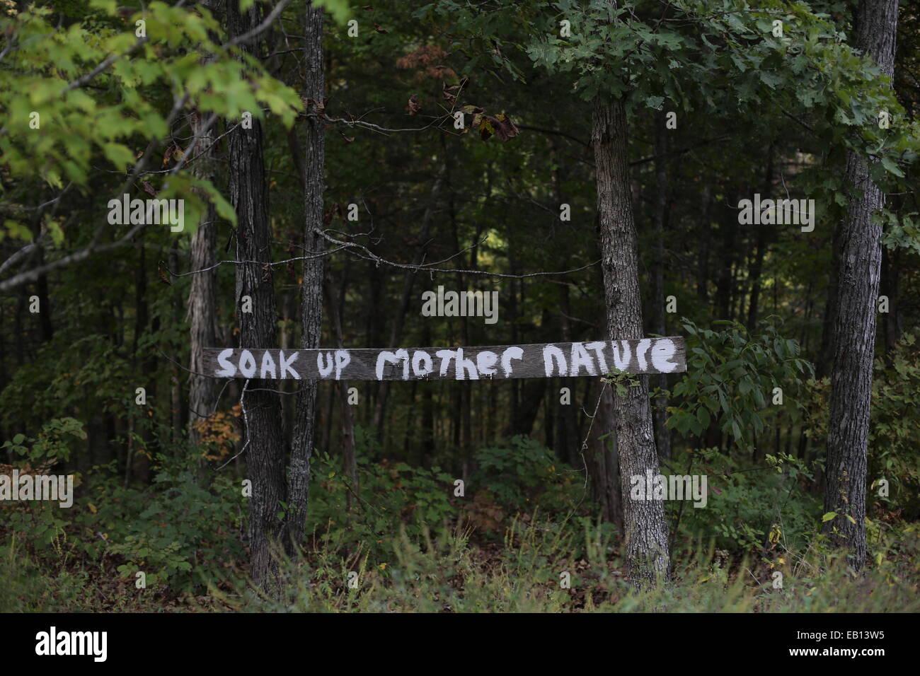 Un signo en un bosque en la parte superior de la roca en Branson, Missouri, leyendo 'El roble hasta la madre Imagen De Stock