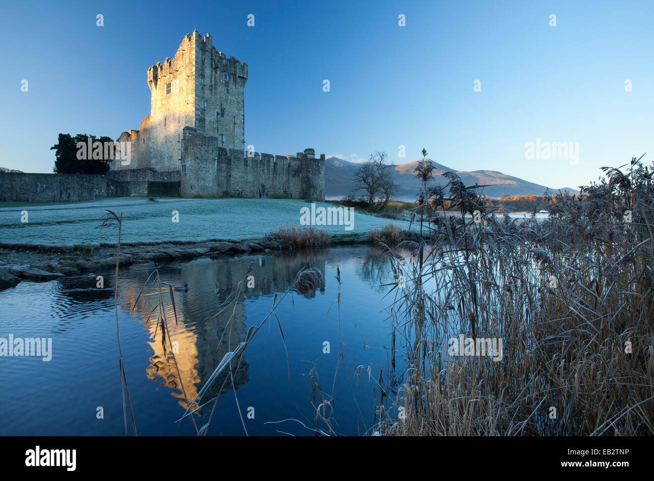 Invierno en el Castillo Ross, Lough Leane, Parque Nacional de Killarney, condado de Kerry, Irlanda. Imagen De Stock