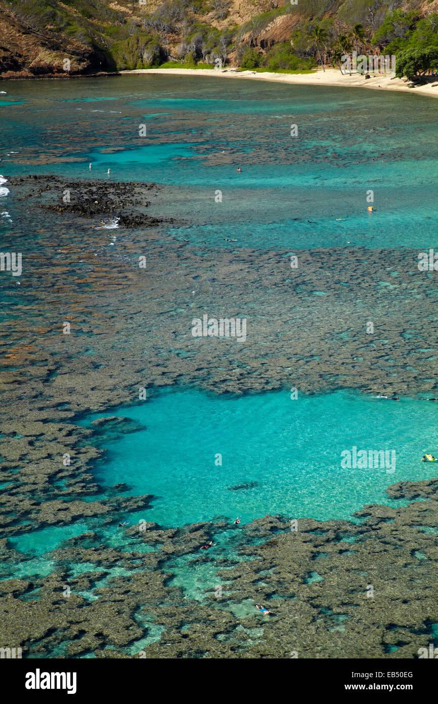La gente bucear entre arrecifes de coral en la bahía de Hanauma Nature Preserve, Oahu, Hawaii, EE.UU. Foto de stock
