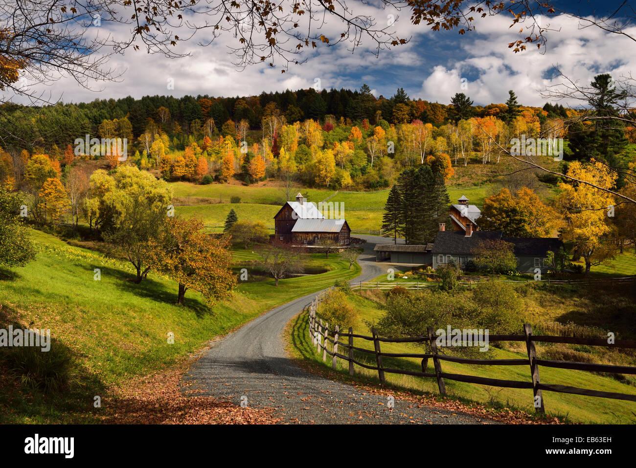 Árbol de otoño colores a Sleepy Hollow farm road woodstock cloudland homestead en Vermont, EE.UU. Imagen De Stock