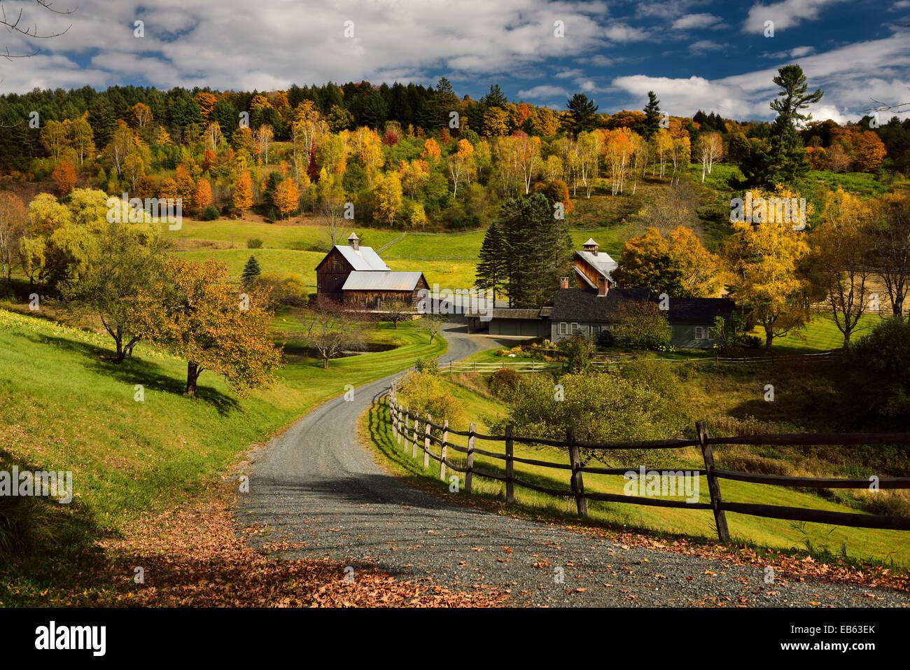 Brillantes hojas caer alrededor de Sleepy Hollow farm en Woodstock road cloudland vermont ee.uu. Imagen De Stock