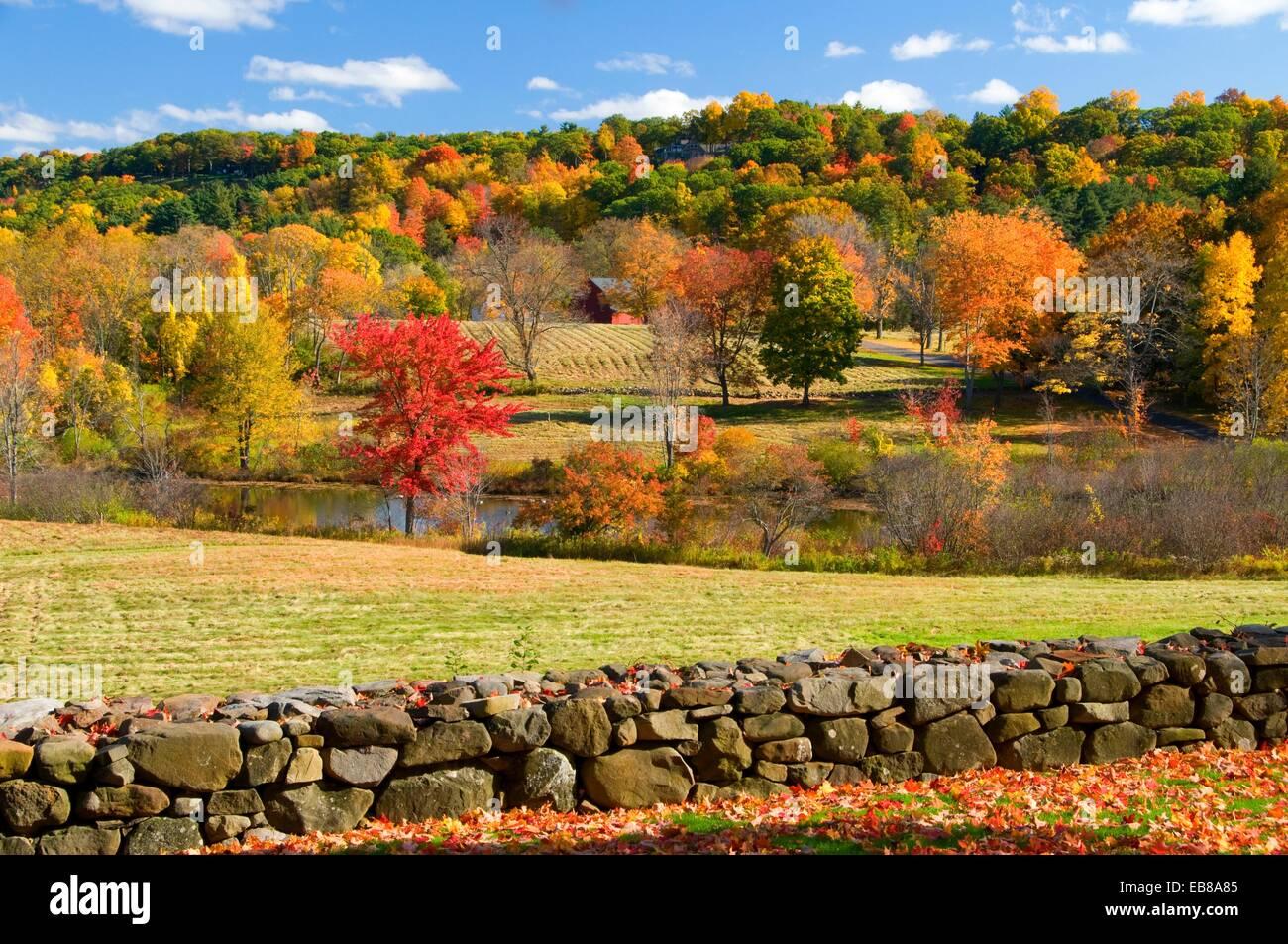 Vista Rural de Papa Riddle, Casa Museo Hill-Stead, Farmington, Connecticut Foto de stock