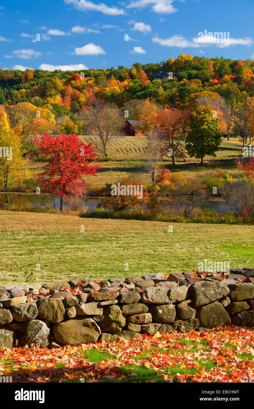 Vista Rural de Papa Riddle Casa Museo Hill-Stead Farmington Connecticut Foto de stock