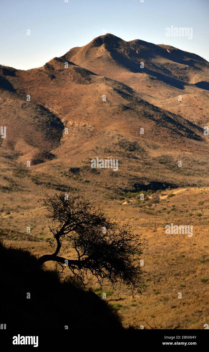 Vistas a las montañas Naukluft, Namibia, Parque Nacional Namib Naukluft Imagen De Stock
