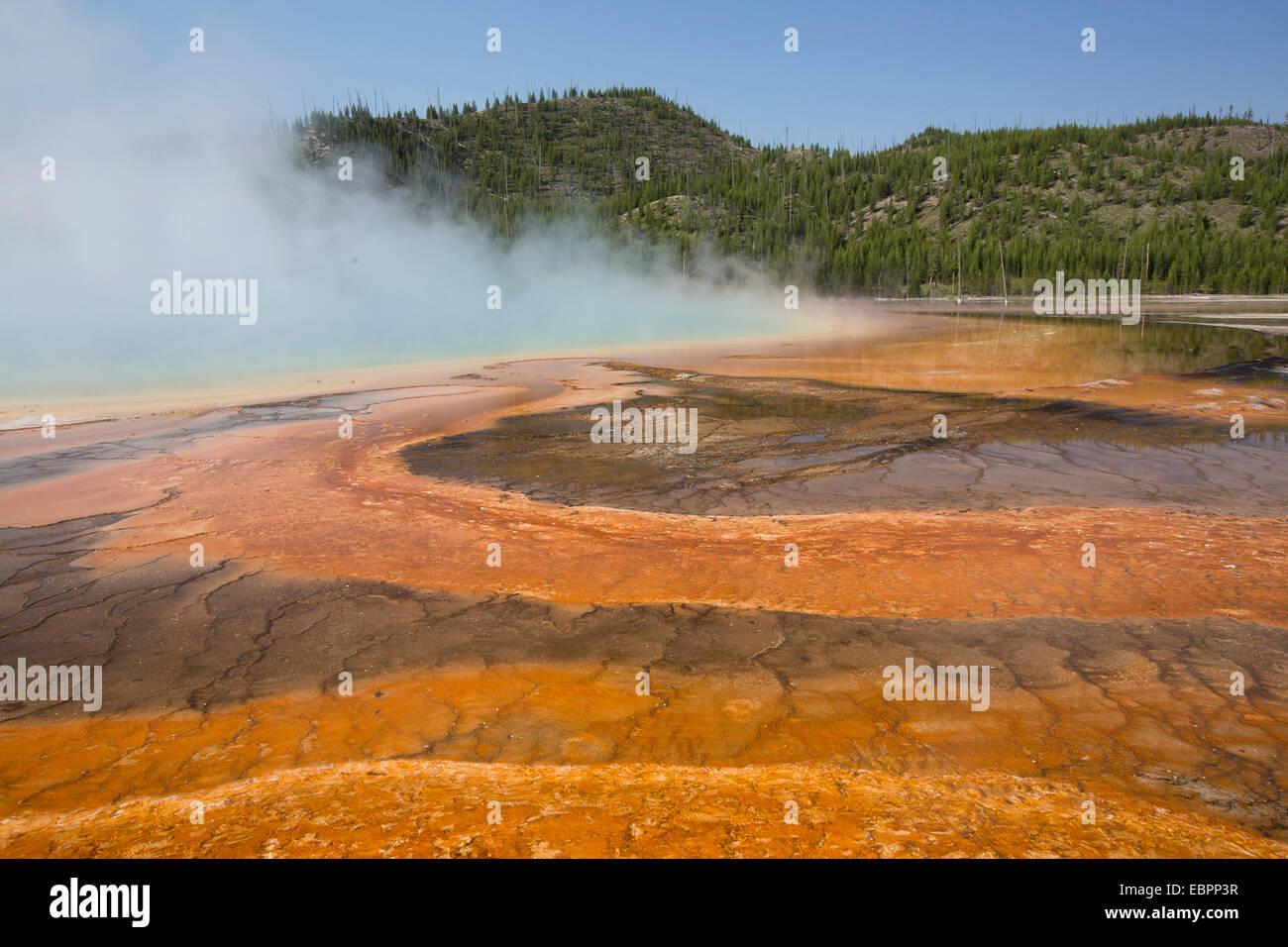 Piscina naranja el escurrimiento de bacterias y algas, Grand Prismatic Piscina, Midway Geyser Basin, el Parque Nacional Yellowstone, Wyoming, EE.UU. Foto de stock