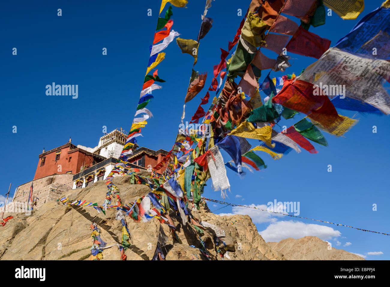 Banderas de oración en el monasterio de Namgyal Tsemo en Leh, Ladakh, en los Himalayas, India, Asia Foto de stock