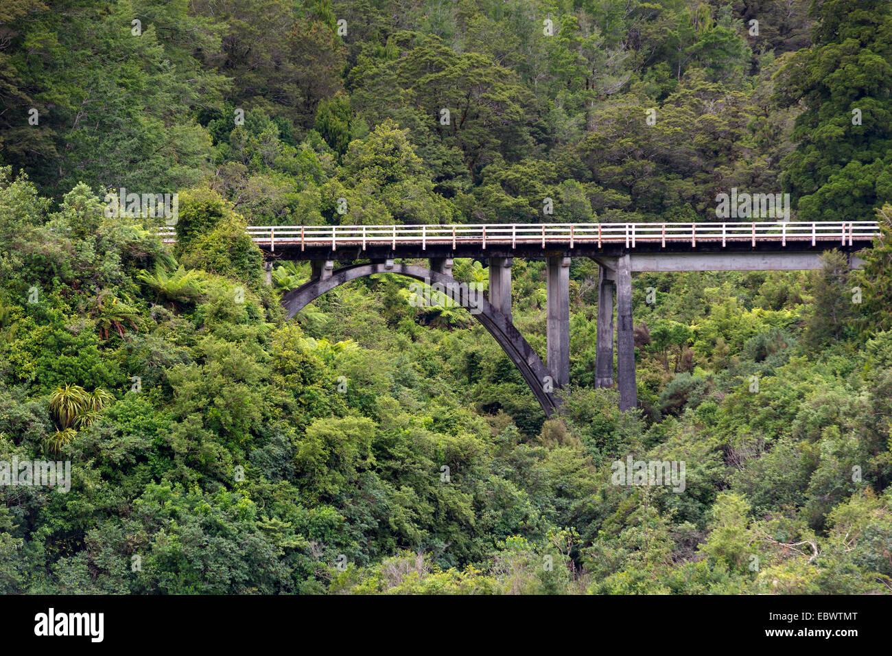 Puente del ferrocarril en la selva, Charleston, región de la Costa Oeste, Nueva Zelanda Foto de stock