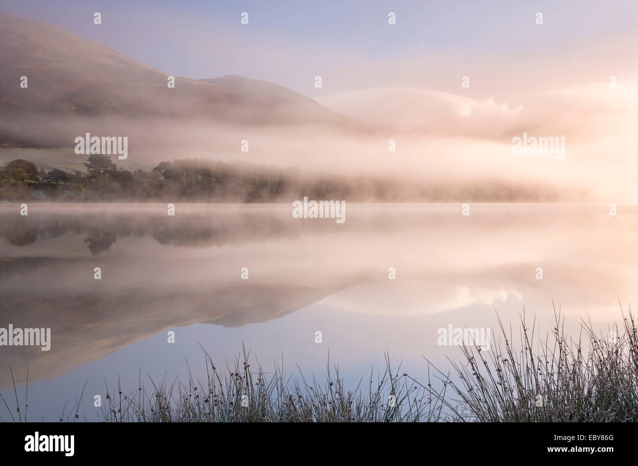 A lo largo de Loweswater Misty mañana en el Lake District, Cumbria, Inglaterra. Otoño (Noviembre) de 2013. Foto de stock