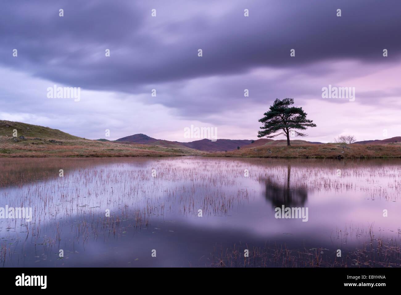 Kelly Hall Tarn en penumbra, Lake District, Cumbria, Inglaterra. Otoño (noviembre de 2014). Imagen De Stock