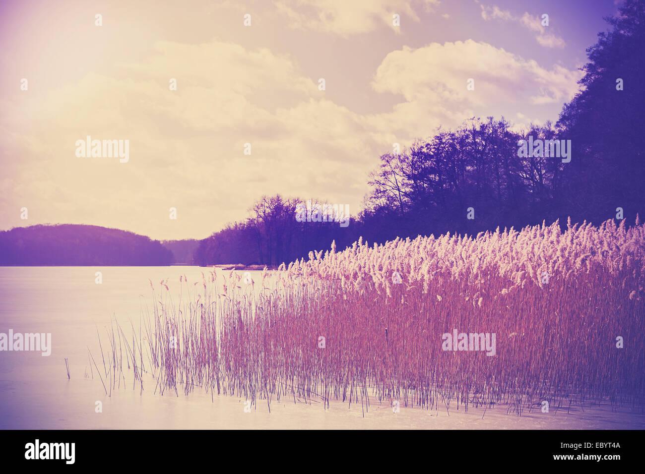 Vintage Retro tonificado imagen del lago en invierno. Imagen De Stock