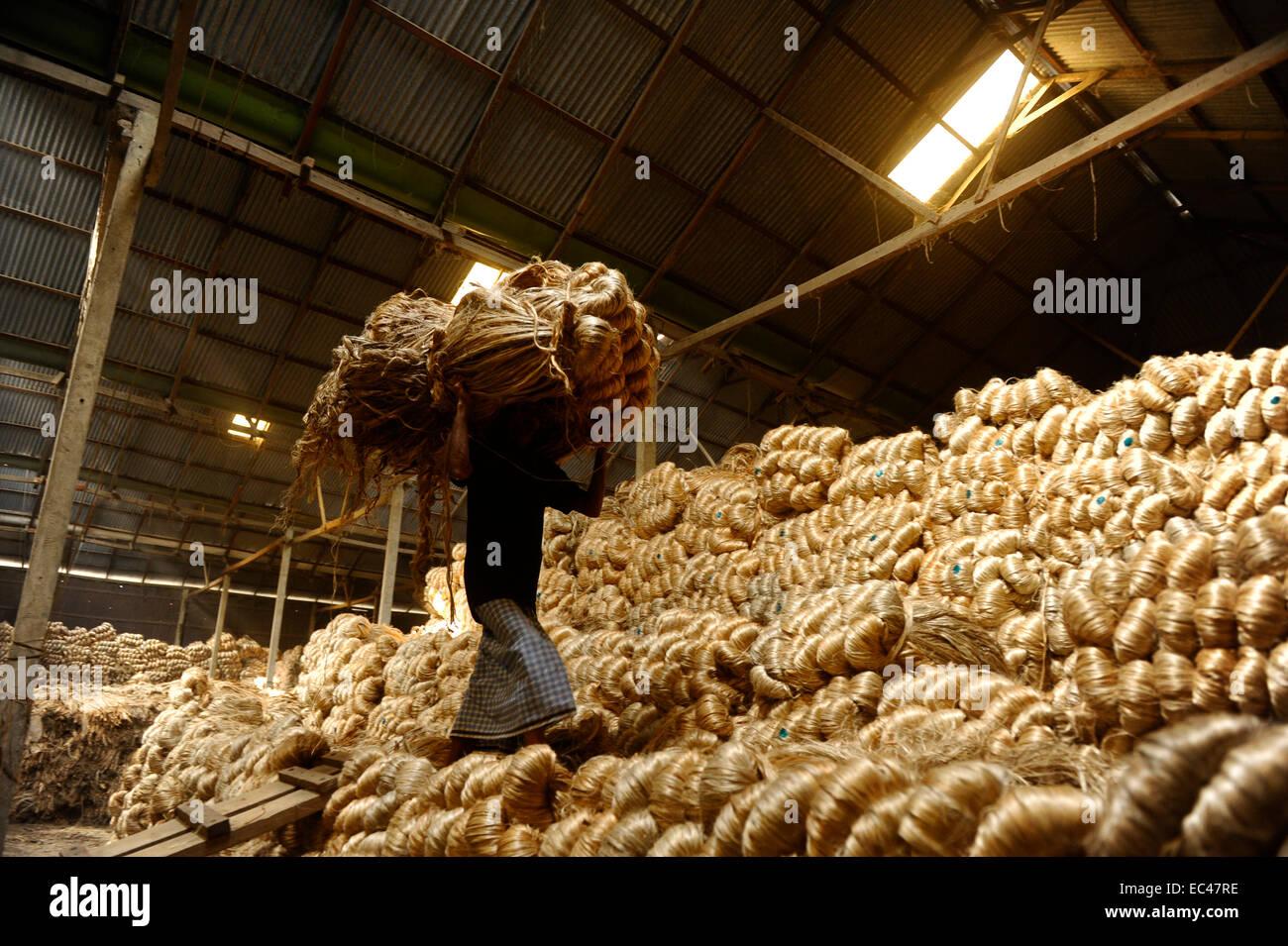 b077116f0 Un obrero dentro de la fábrica del yute en Bangladesh. Yute crece  naturalmente en el suelo fértil de Bangladesh, es por ello que también es  llamado el