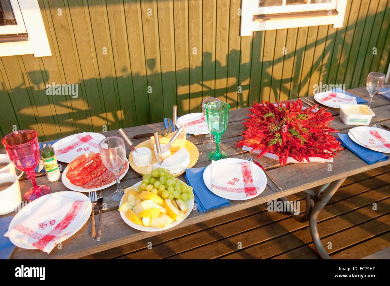 Suecia - Cangrejos de río con eneldo comido langostino tradicional sueca en parte. Foto de stock