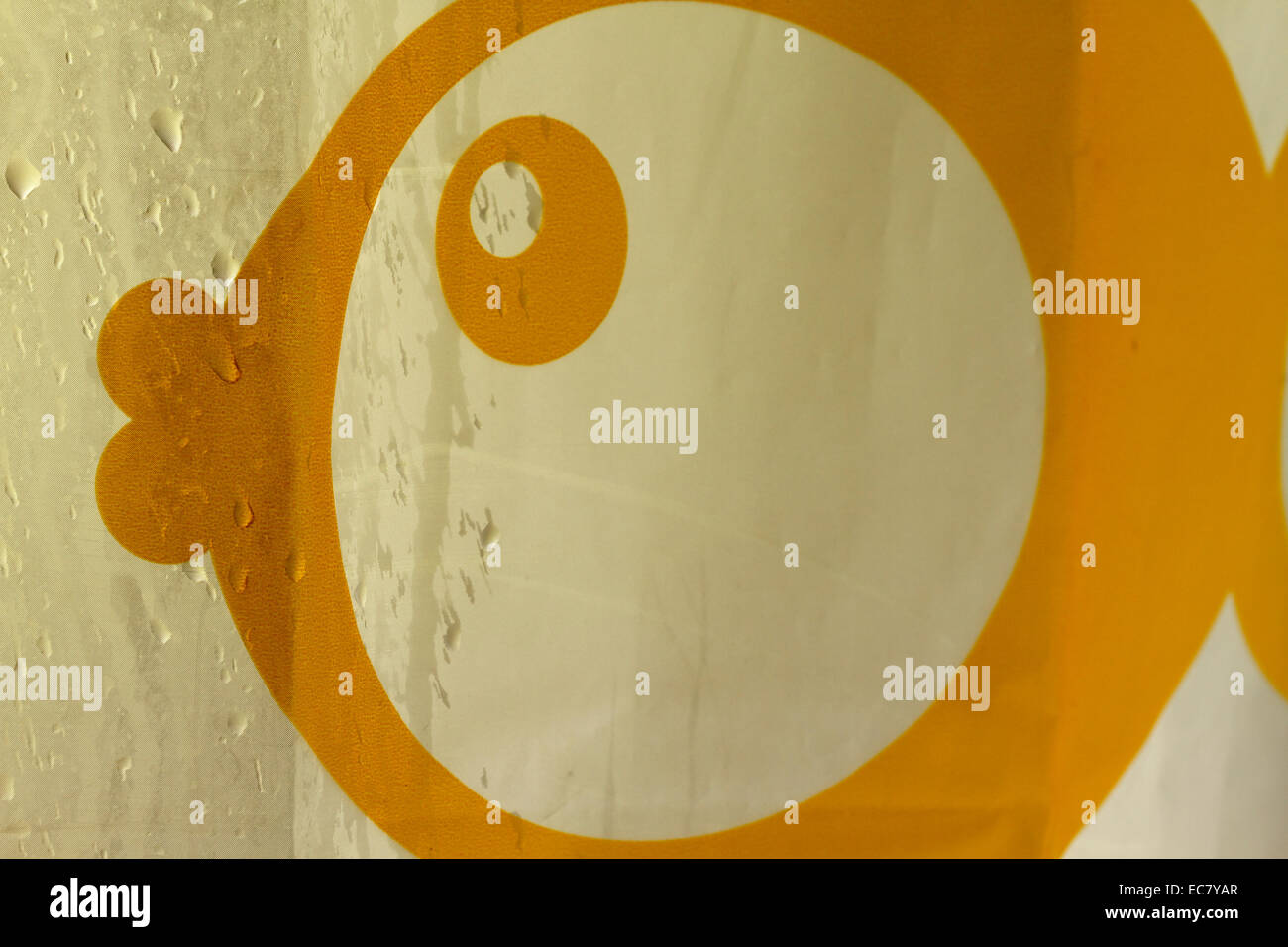 La cortina de la ducha fish gotas de agua cae recortado Imagen De Stock