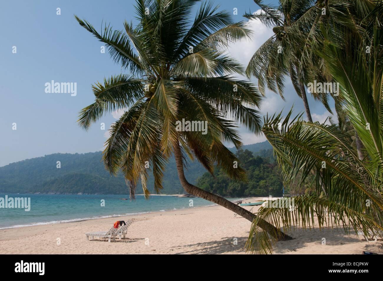 Malasia, en el estado de Pahang, la isla de Tioman, Pulau Tioman, el Mar del Sur de China Local Foto de stock