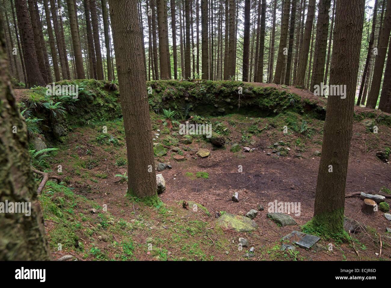 Reino Unido, Irlanda del Norte, en el Condado de Down, Bryansford, el frondoso y vibrante Tollymore Park es donde Theon está acechado por Ramsay nieve, y ha sido utilizado para describir las tierras cubiertas de nieve entre Invernalia y el muro Foto de stock