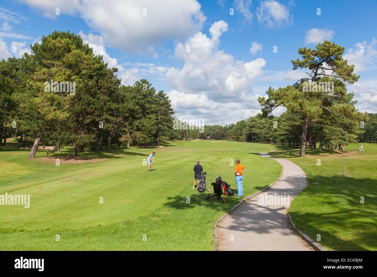 Francia, Pas de Calais, Hardelot, golf pine Imagen De Stock