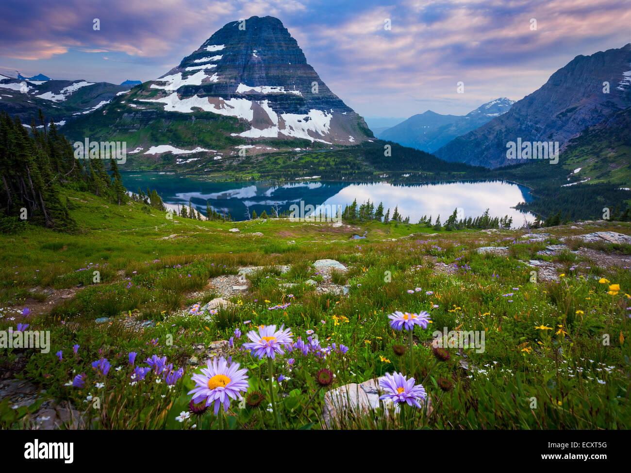 Hidden Lake está ubicado en el Parque Nacional de Los Glaciares, en la U. S. el estado de Montana. Imagen De Stock