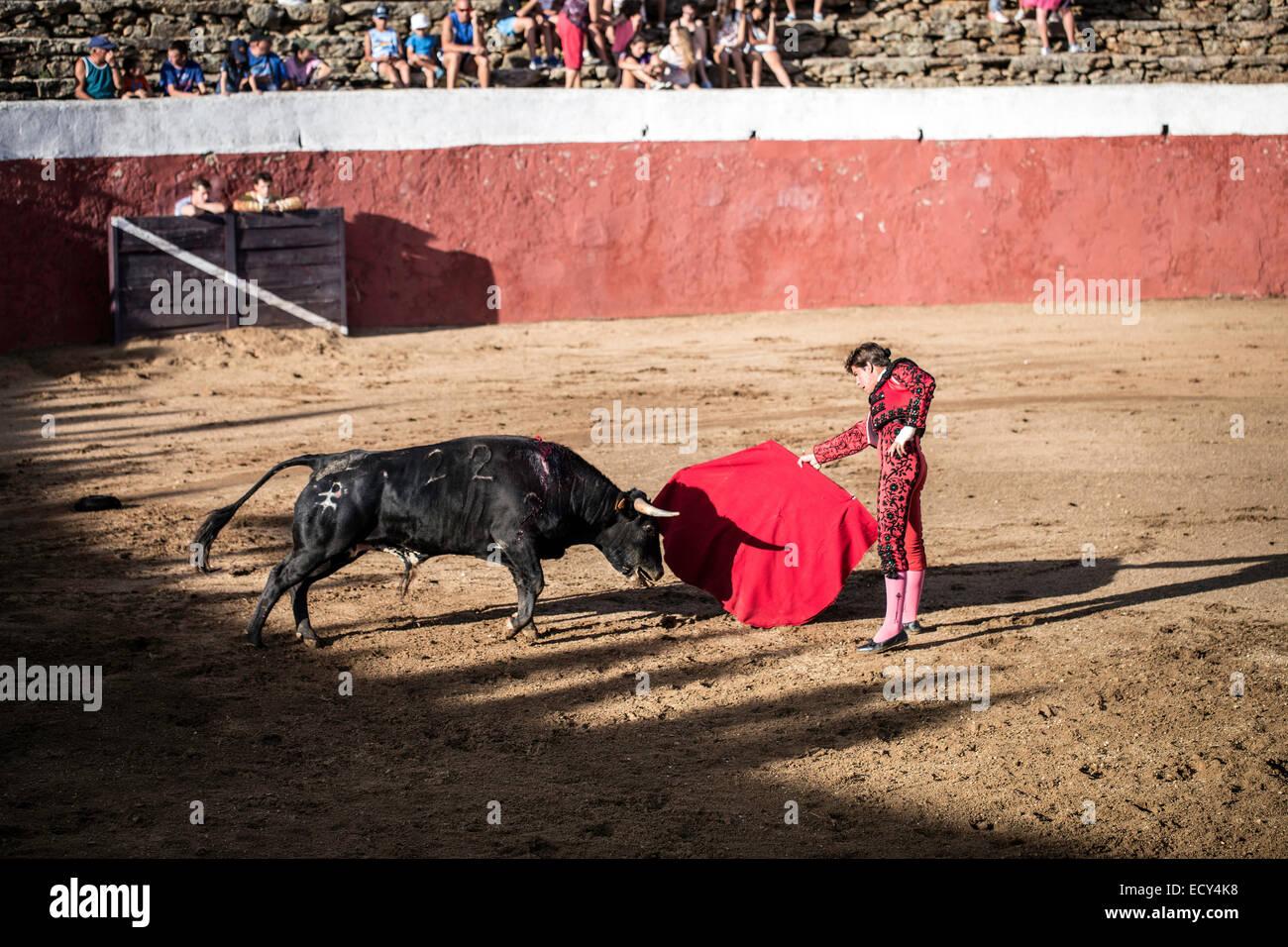 Bullfight Traditional Imágenes De Stock   Bullfight Traditional ... d420f168bb4