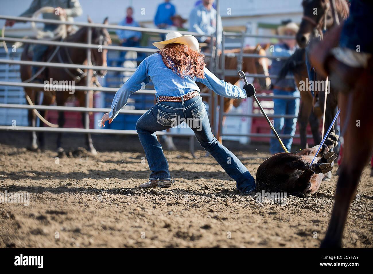 Cowgirl caucásica caballo atado en el Rancho Rodeo Foto de stock