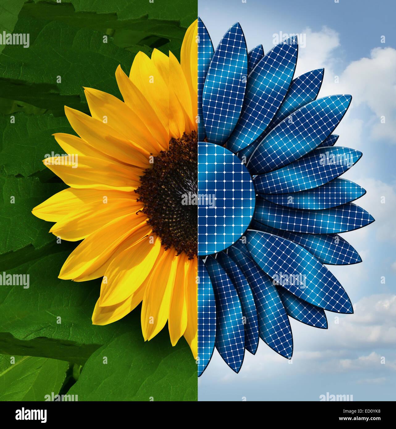 Concepto de energía solar como un girasol dividido en dos, con el lado opuesto como pétalos panel solar Imagen De Stock