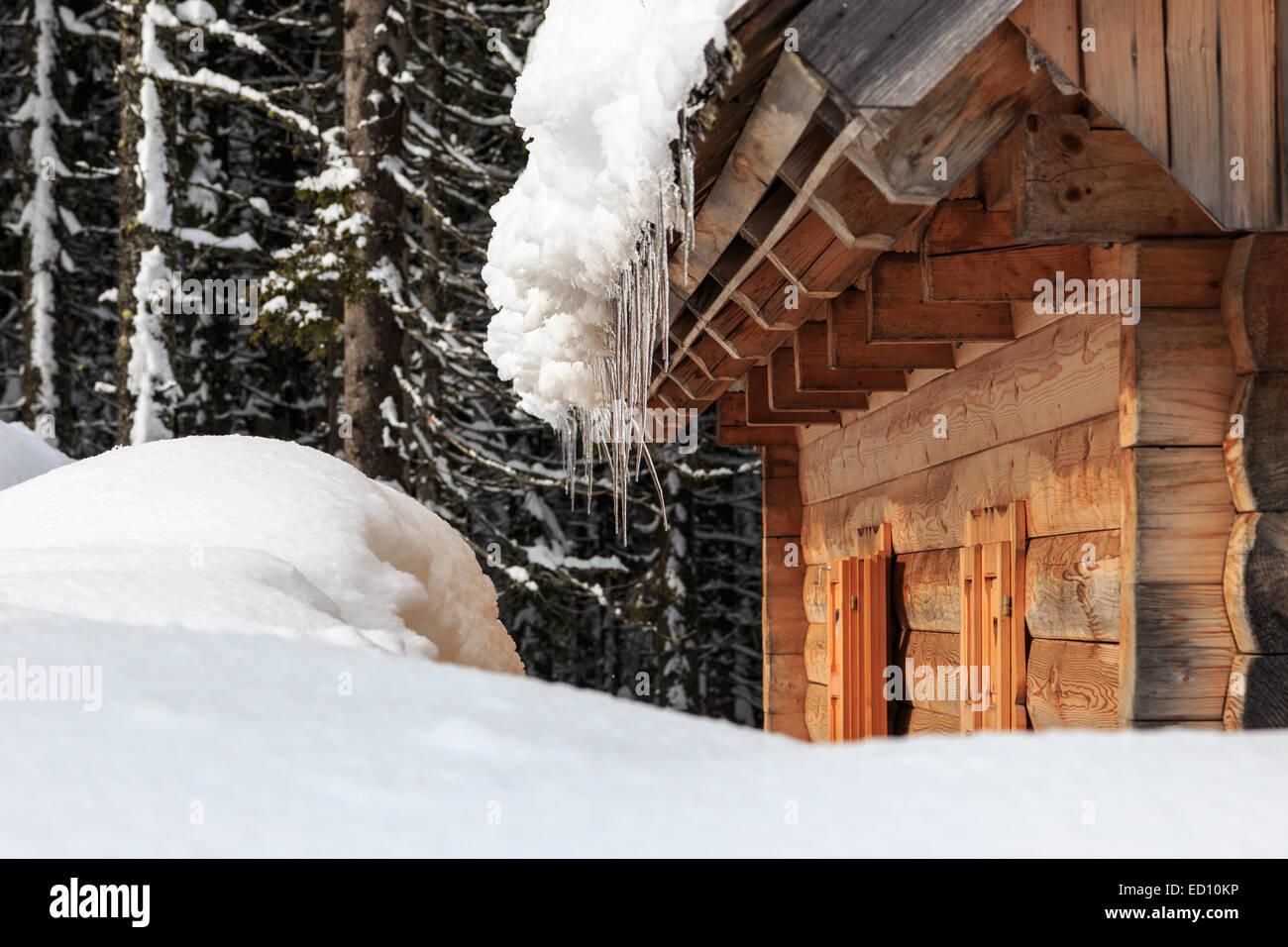 Paisaje de invierno pinos y caba as cubiertas con nieve pokljuka eslovenia foto imagen de - Cabana invierno ...