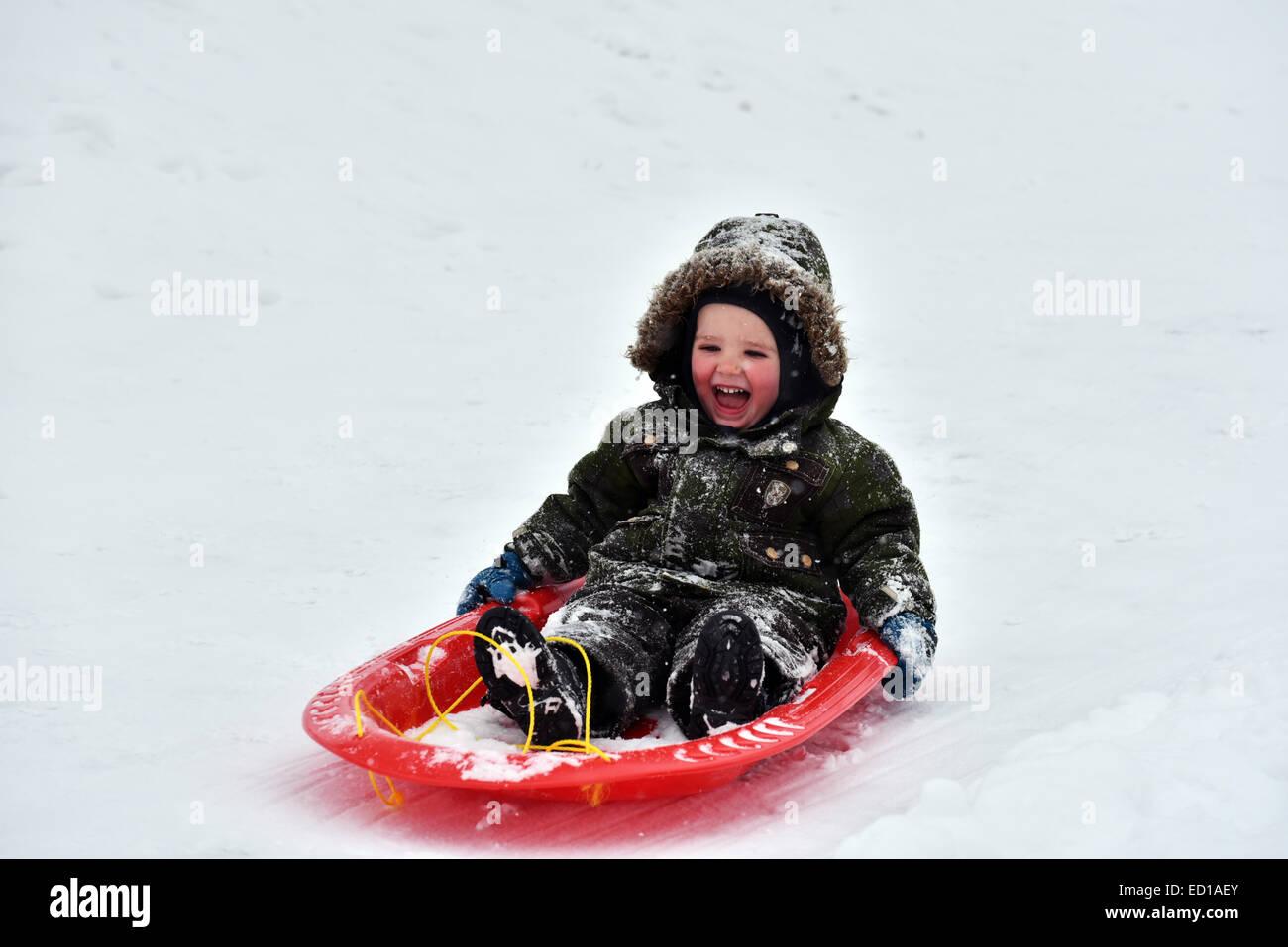 Un niño pequeño (2 1/2 años) encantado de trineo Imagen De Stock