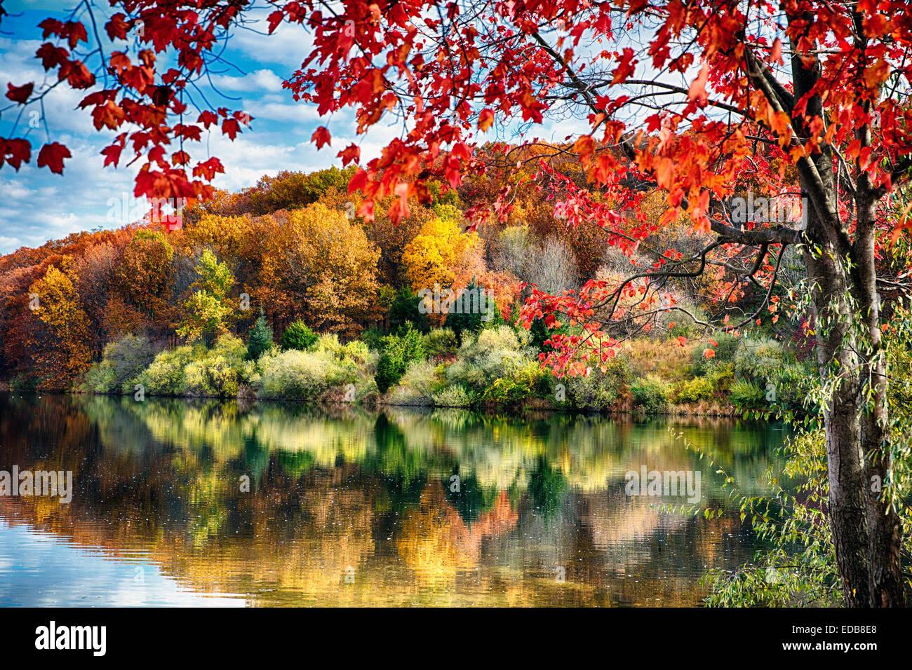 Coloridos árboles reflejos en un lago, Embalse de valle Redondo, Hunterdon County, New Jersey Imagen De Stock