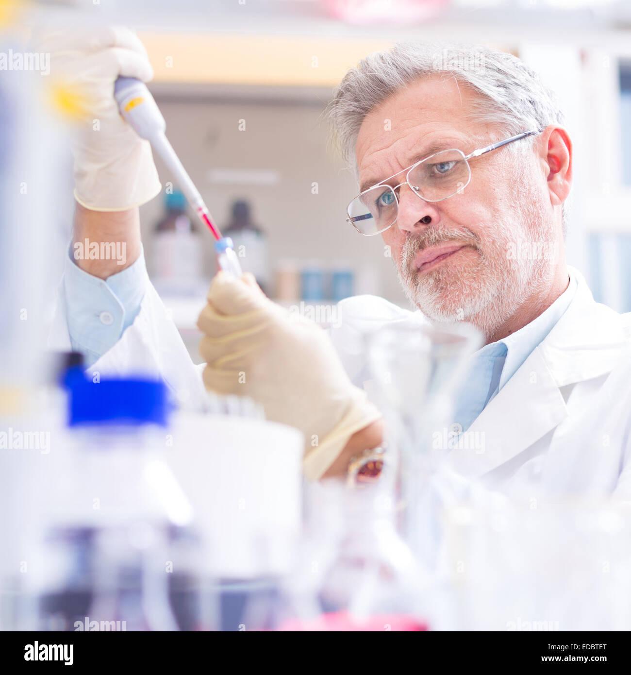 La investigación científica de la vida en el laboratorio. Imagen De Stock