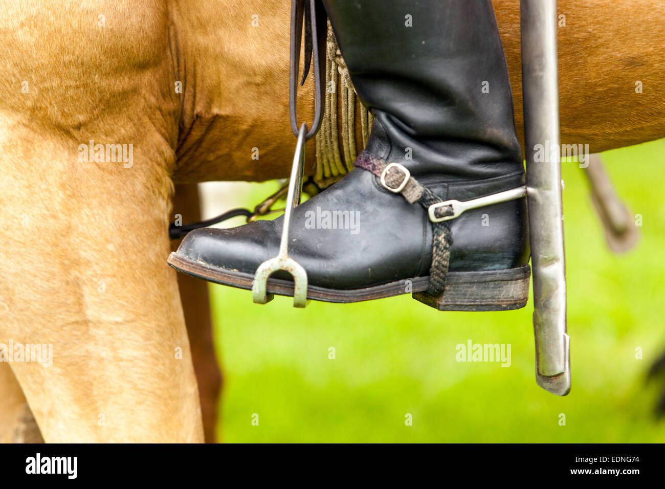 Boot en el estribo Imagen De Stock
